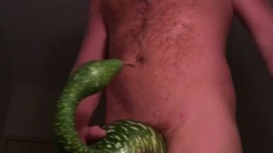 Wizard gourd masturbate buddy wompus xxx
